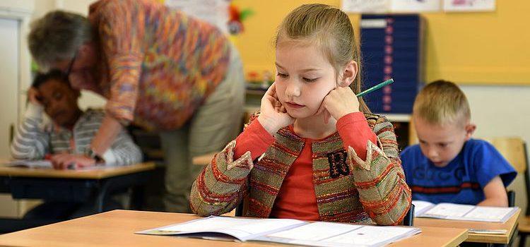 Freiwilligendienst in einer Schule – eine super Vorbereitung für das Lehramt-Studium!